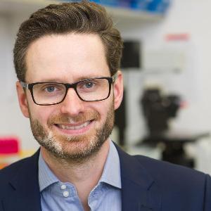Portrait von Professor Dr. Alexander Bartelt