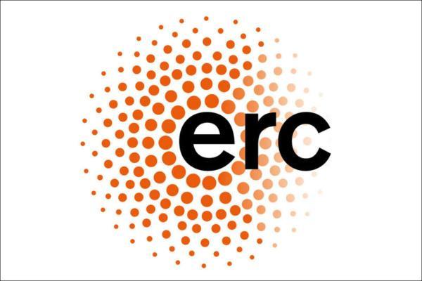 Logo des erc (Europäischer Forschungsrat)