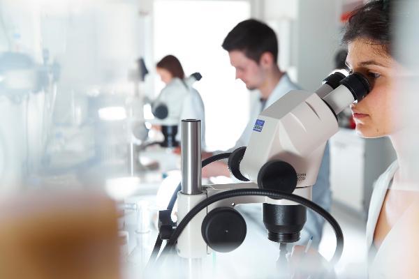 Wissenschaftlerinnen und Wissenschaflter im Labor der Molekularbiologie. Wissenschaftlerin schaut durch Mikroskop