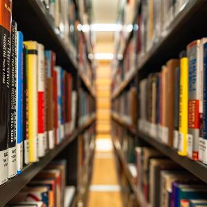 Blick durch zwei Regale, in denen Bücher stehen.