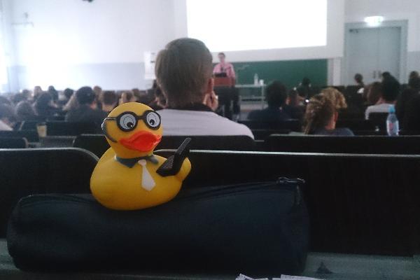 Gelbe Quietscheente, fotografiert auf dem Tisch eines Studenten während einer Vorlesung.