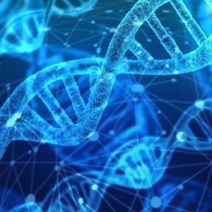 DNA - Genmaterial | www.pixabay.com/geralt