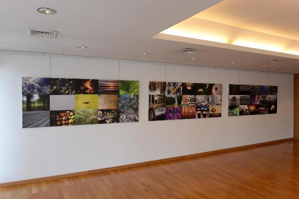 Blick in den Ausstellungsraum des Circolo degli Esteri mit den auf drei Tafeln angeordneten Arbeiten von Stephan M. Schuster