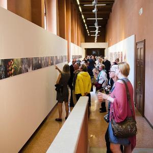 Blick in den Ausstellungsraum der VIU mit den als Fries angeordneten Arbeiten von Stephan M. Schuster