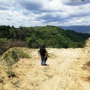 Mann geht einem Feldweg im Dschungel